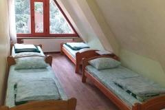 Стая - 6 легла