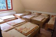 Стая- 7 легла